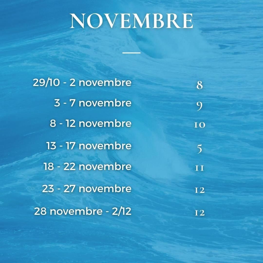 Angeli novembre